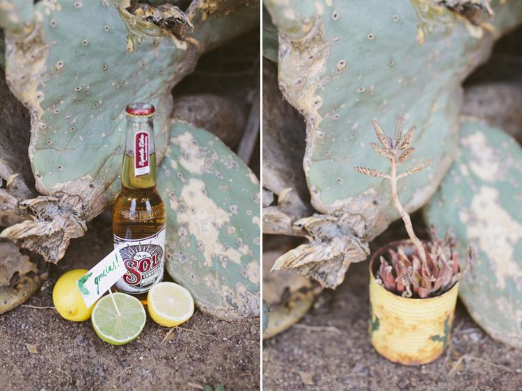 cactus__14