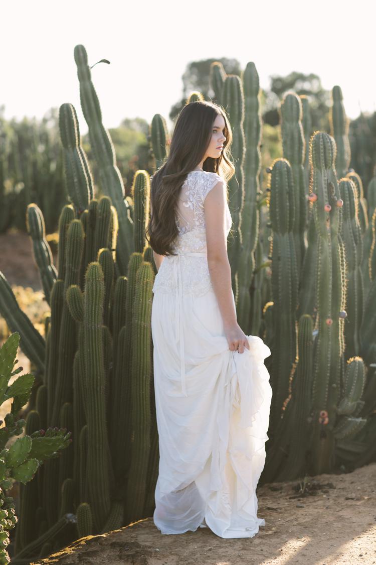 cactus__18
