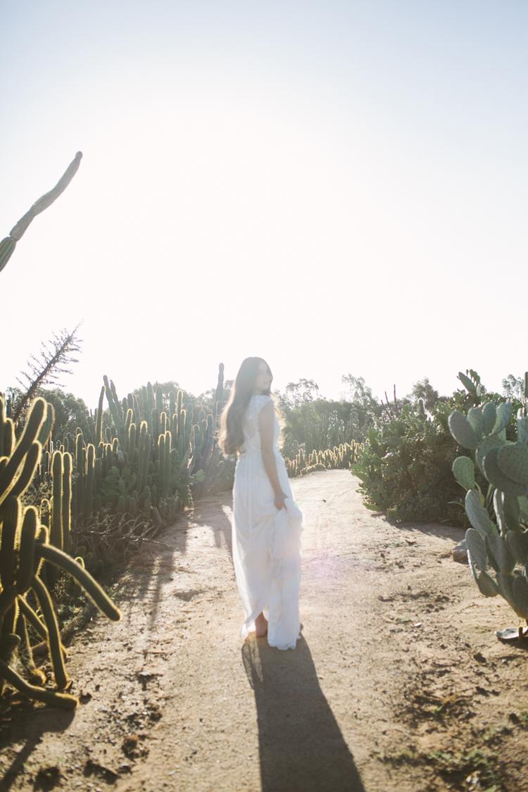 cactus__20
