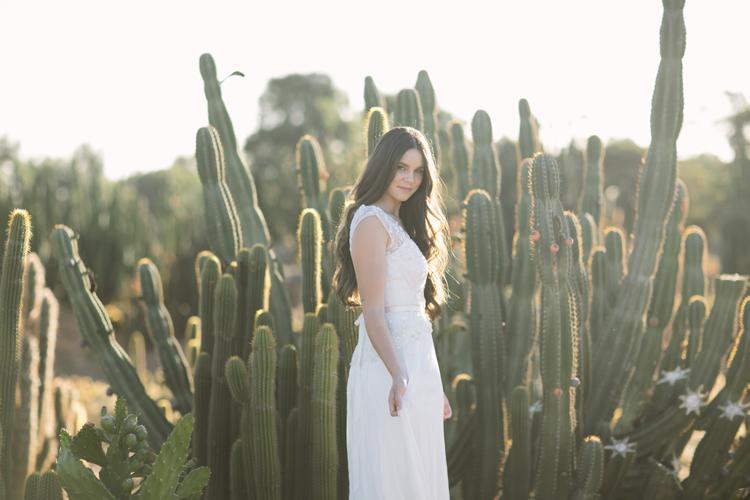 cactus__21