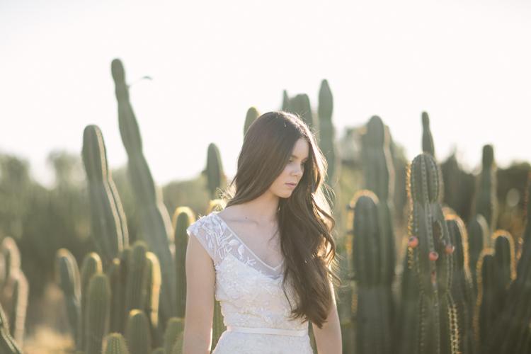 cactus__22