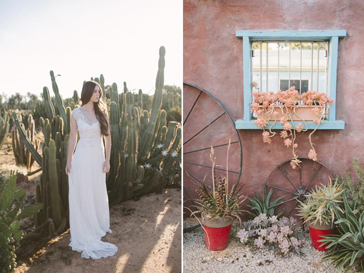 cactus__28